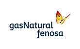 Logo GAS NATURAL FENOSA